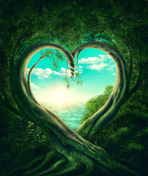 trees forming a heart - enigma images stock photos and pictures