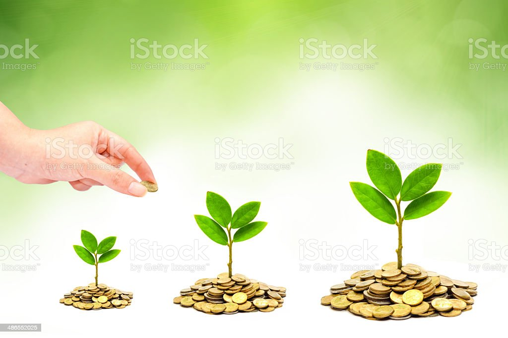 trees growing on coins / csr stock photo