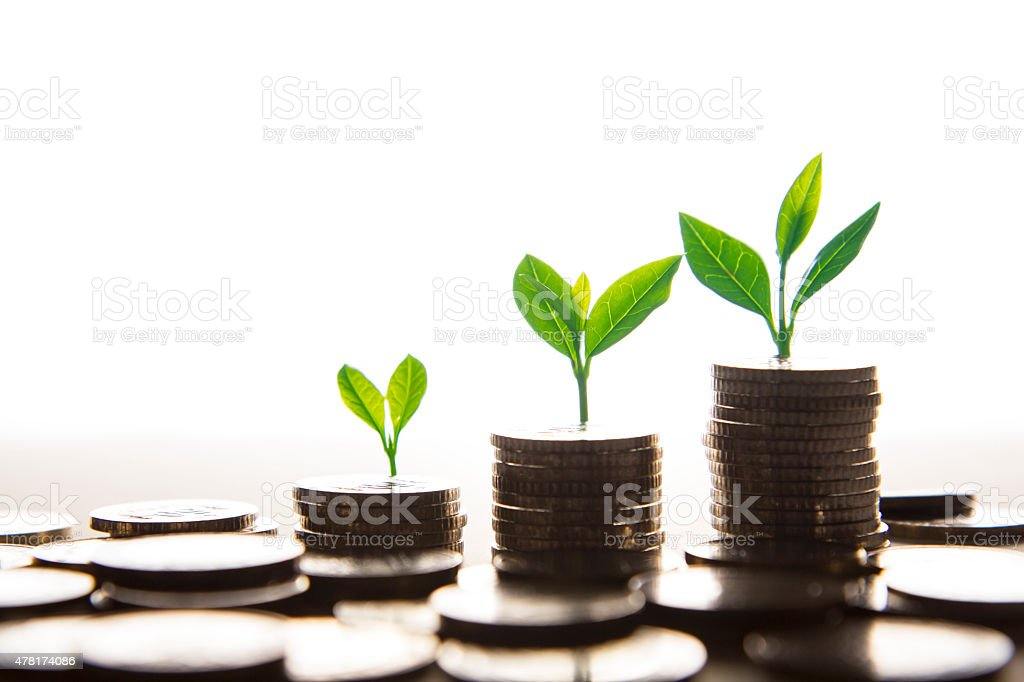 Trees Growing On Pile Of Coins stock photo