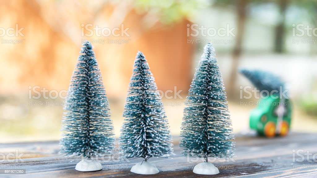 Trees in a Christmas Tree stock photo