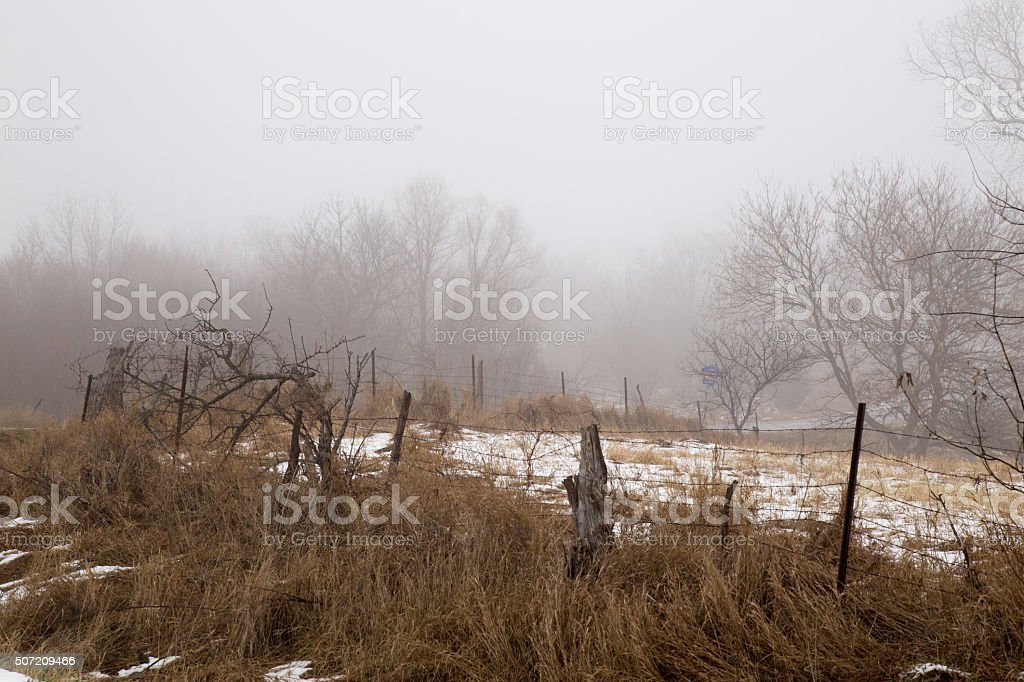Trees In A Farm Field In Fog With Fence stock photo