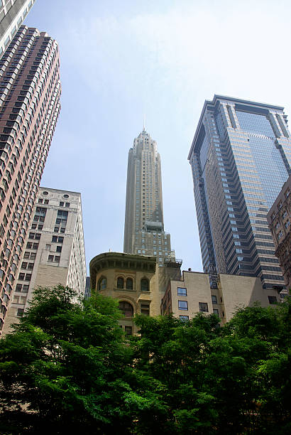 trees in front of manhattan skyscrapers - mikefahl stock pictures, royalty-free photos & images