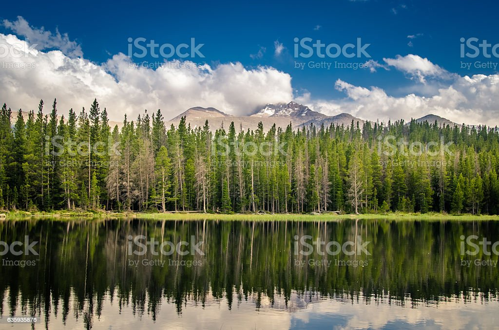Trees, mountains, and clouds reflected in a lake. - foto de stock