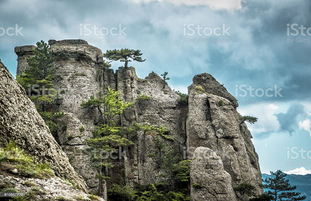 Trees on a rock in the Demerdji mountain, Crimea stock photo