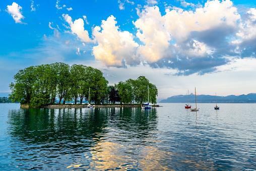 Trees on the small island in Geneva lake, Switzerland