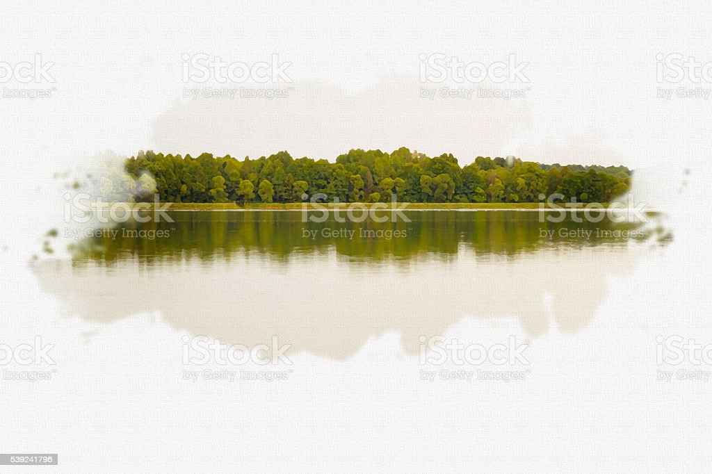 Trees reflected in water. royalty-free stock photo