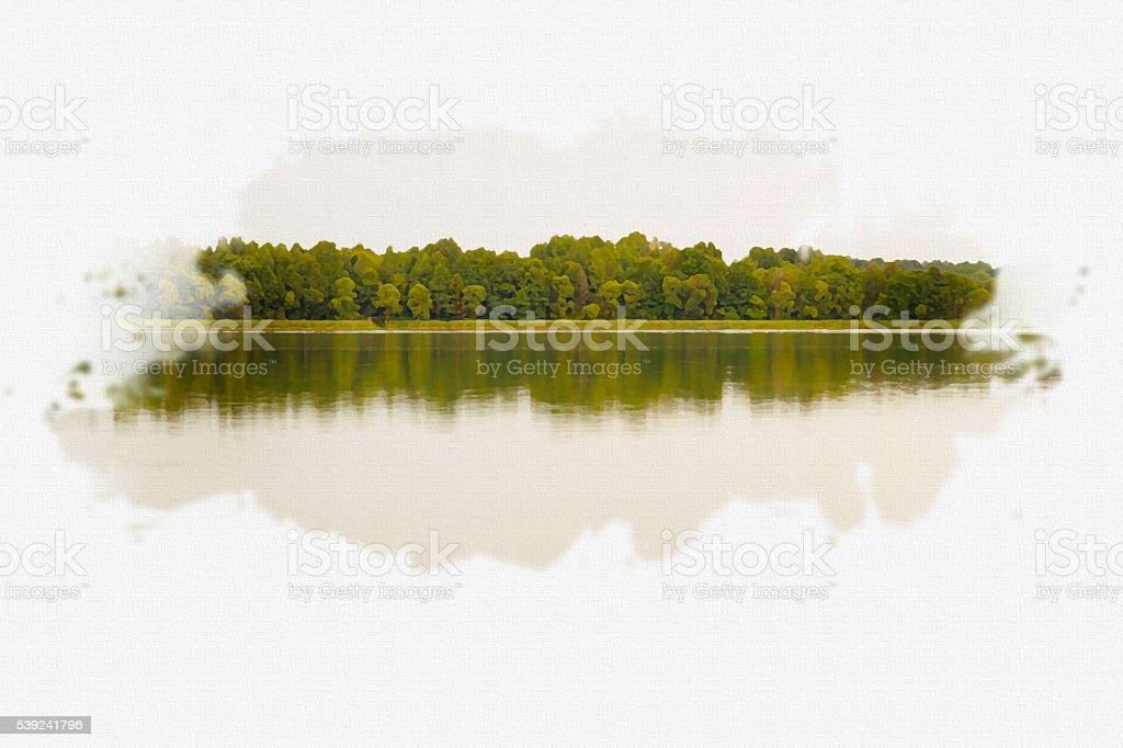 Árboles refleja en el agua. foto de stock libre de derechos