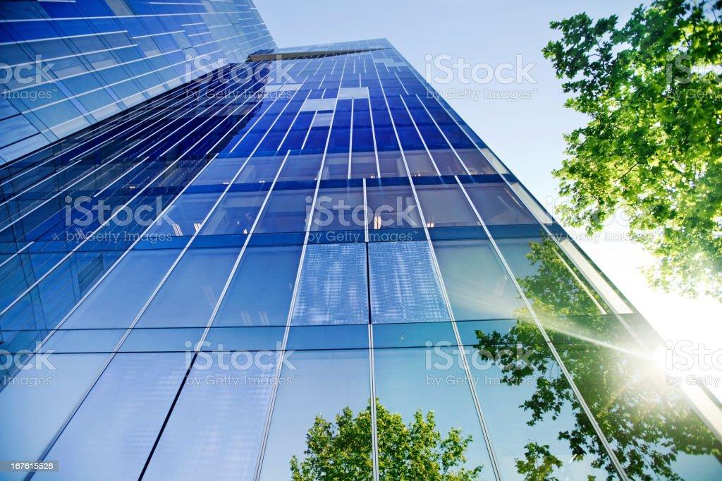 Bäume sich auf Gebäude – Foto