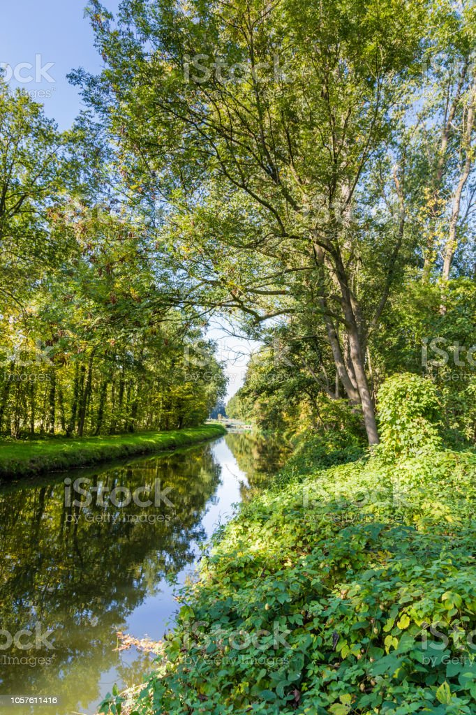 Bomen weerspiegelt in het water foto