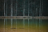 Trees reflection in the lake, yellow, blue and green colors, autumn concept