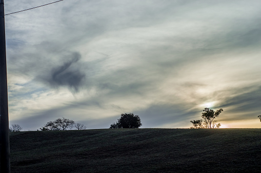 trees with dark contrast, sunset with clouds covering the sun, copy space