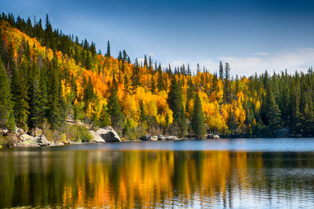 Trees with Fall foliage at Bear Lake in Rocky Mountain National Park stock photo