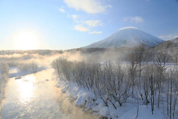 Trees with frost and Mt.Yotei stock photo