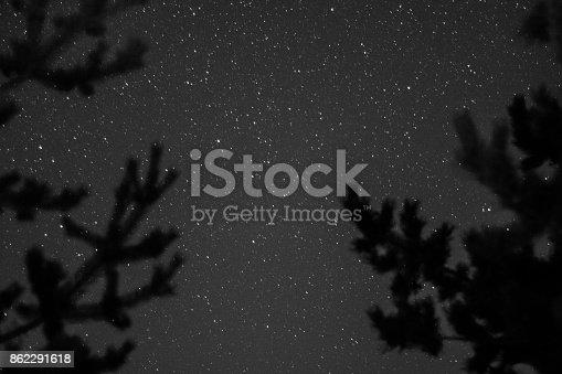 653506436istockphoto tree-star night view 862291618