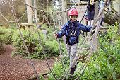istock Treetop adventure park 543452830