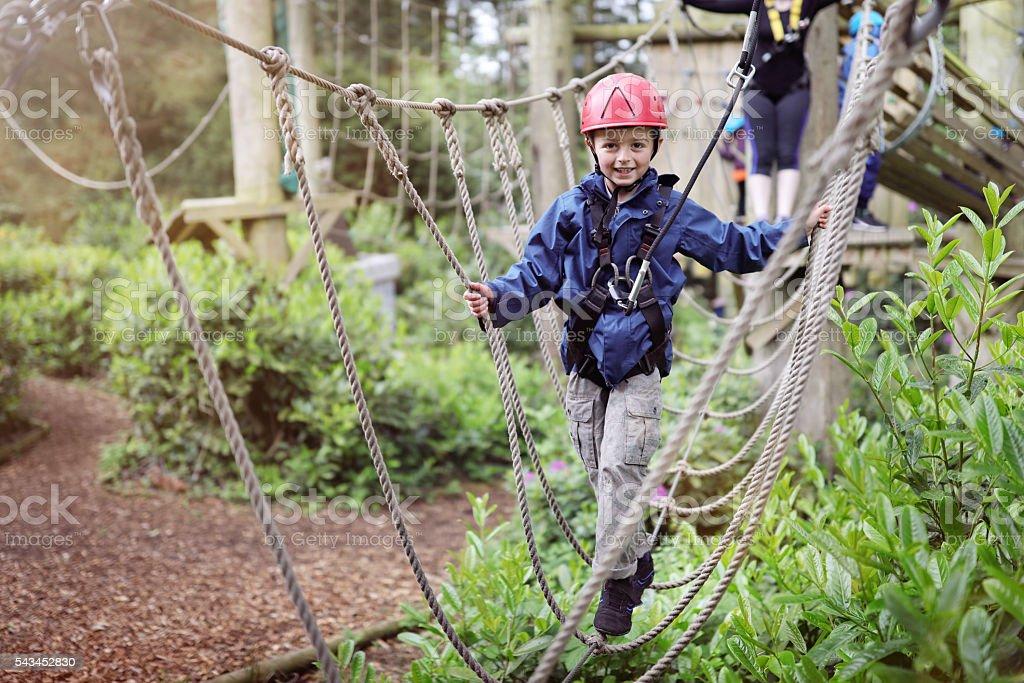 Treetop adventure park – Foto