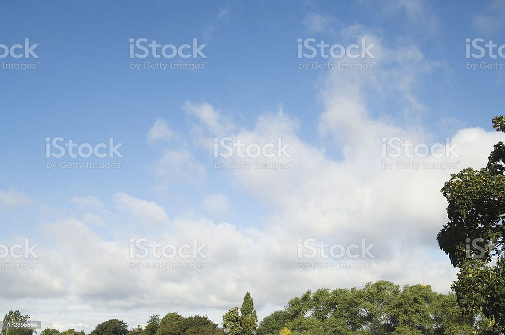 Treetops view with sky and clouds royalty-free stock photo