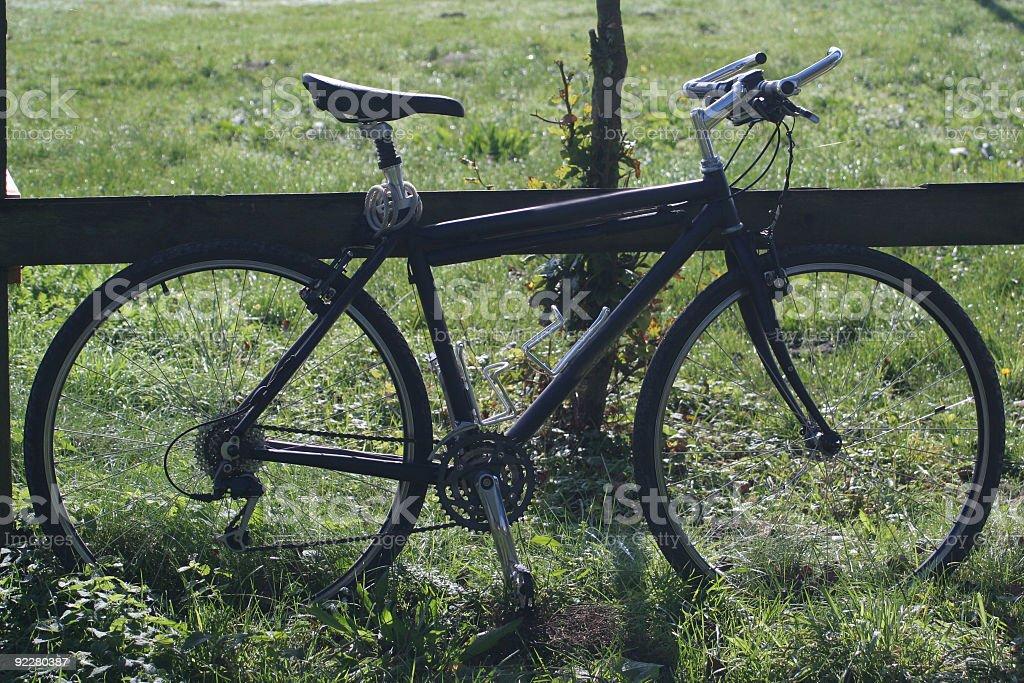 Trekking Bike # 6 royalty-free stock photo