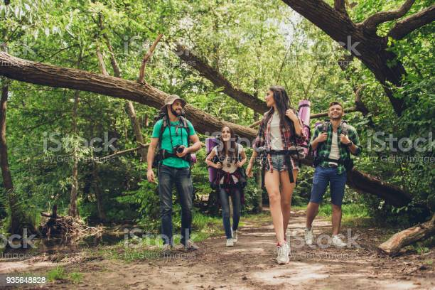 Trekking camping and wild life concept two couples of friends are in picture id935648828?b=1&k=6&m=935648828&s=612x612&h=0cnj1vjl5skezadppsxivpco9qaizsjjlkbe026edbe=