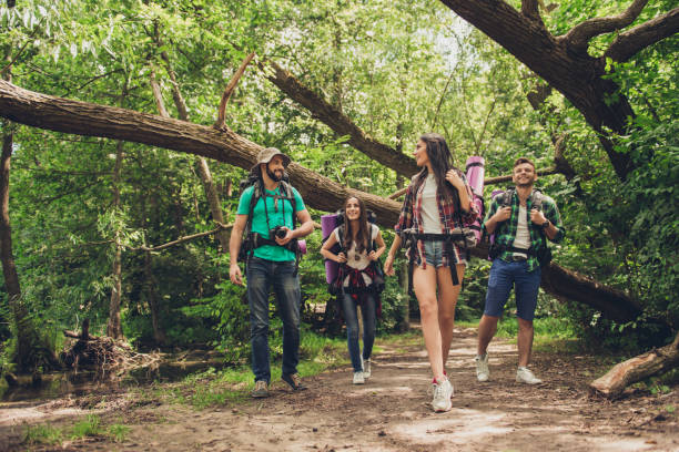 trekking, camping and wild life concept. two couples of friends are walking in the sunny spring woods, talking and laughing, all are excited and anxious, jungle trails - hiking stock photos and pictures