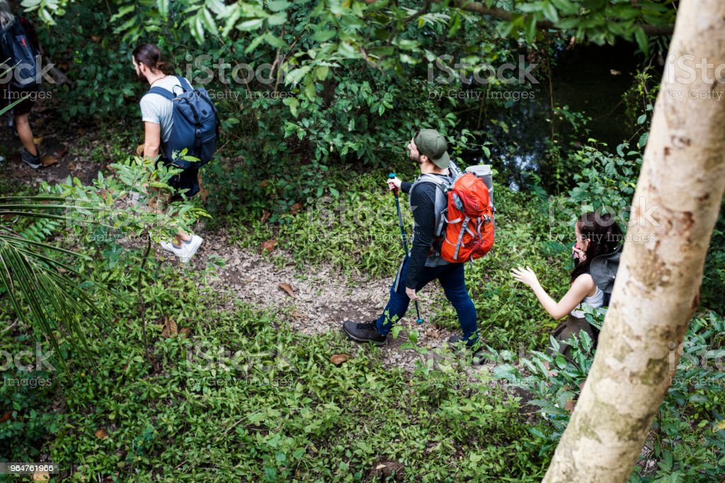 Trekking in a forest royalty-free stock photo