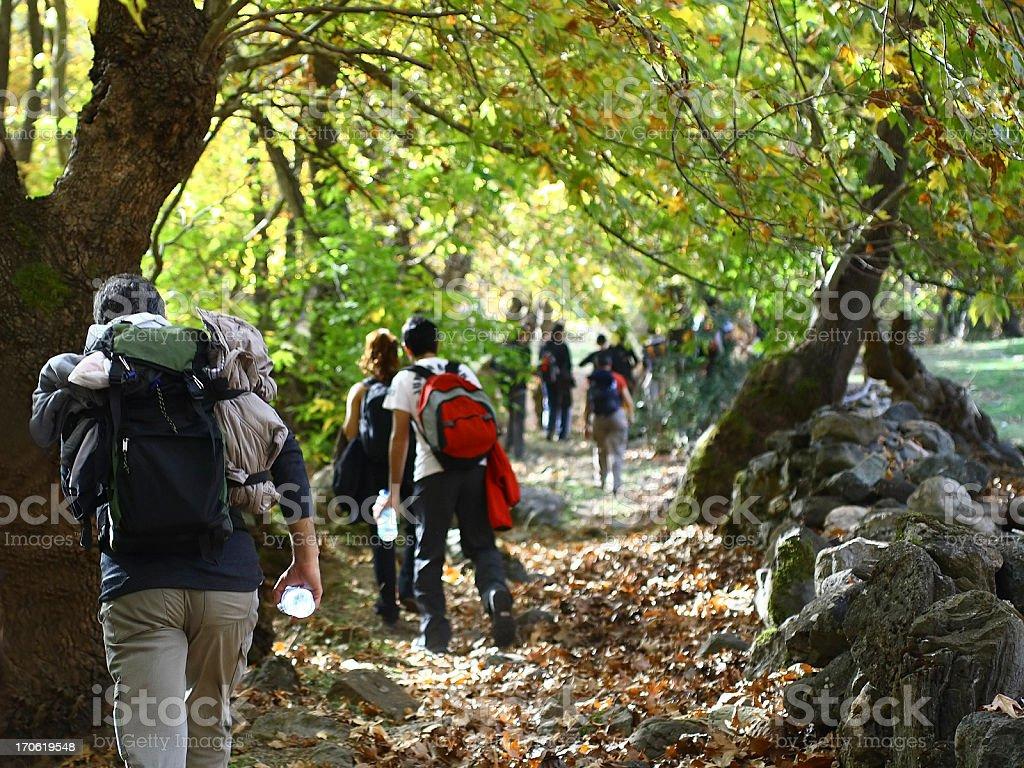 Trekking in nature royalty-free stock photo