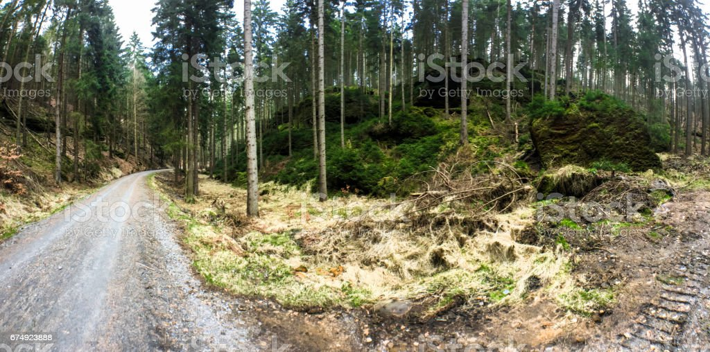 Trekking in the german Elbe Sandstone Mountains. royalty-free stock photo