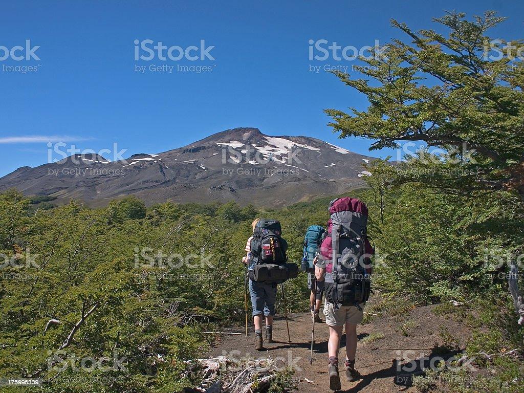 Trekking National Park Villarica stock photo