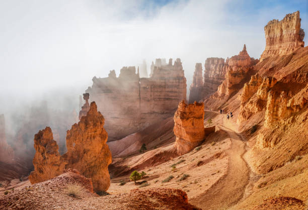Trekking Navajo loop Trail Bryce-Canyon-Nationalpark bei Sonnenaufgang mit Nebel. Utah. USA – Foto