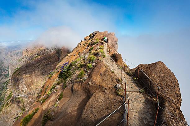 Trekking on Madeira island stock photo
