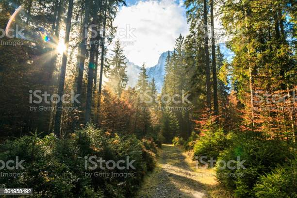 Photo of trekking path in an autumn day in the alps