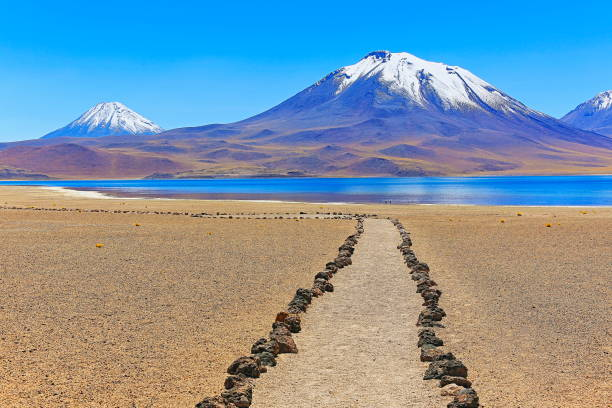 拉古納斯 miñiques 和 miscanti-湖泊和火山雪山-綠松石湖和田園詩般的阿塔卡馬沙漠,火山景觀全景 — — 聖佩德羅-德阿塔卡馬,智利、 bolívia 和阿根廷邊境徒步游步道路徑 - 阿爾蒂普拉諾山脈 個照片及圖片檔