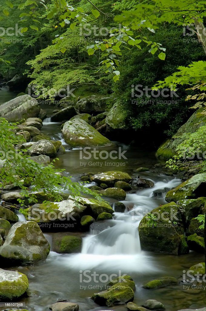 Tremont at Great Smoky Mountains National Park, TN USA royalty-free stock photo
