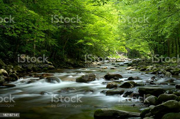 Photo of Tremont, Little Pigeon River Great Smoky Mountains National Park