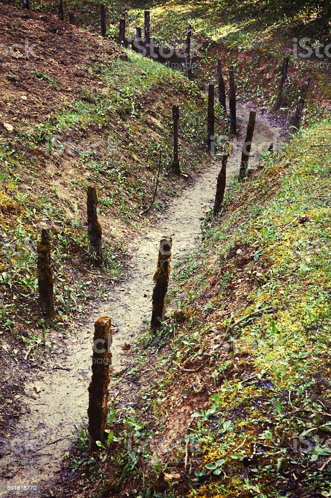 Trench built during the World War I in Verdun – zdjęcie