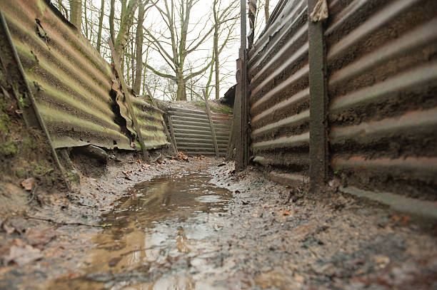 ww1 trenches, sanctuary wood, ypres, belgium - greppel stockfoto's en -beelden