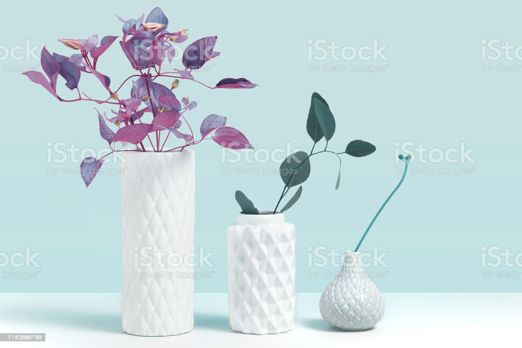 Trending ultraviolet color plant in vase. Mockup image with ornamental plants in modern white ceramic vase standing on grey table against blue background. Concept for flower shop with space for design