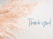 Trendy botanical background with fluffy pampas grass and text Thank you.