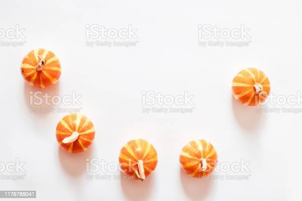 Trendy halloween concept small decor of pumpkins with ponytails on a picture id1176788041?b=1&k=6&m=1176788041&s=612x612&h=kwzdzg57ht6co2rllqgcfniwhdfmqsubuxkbigfygbk=