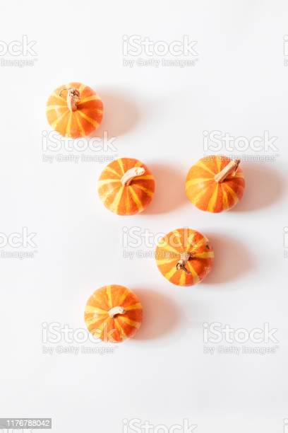 Trendy halloween concept small decor of pumpkins with ponytails on a picture id1176788042?b=1&k=6&m=1176788042&s=612x612&h=dxljc4le5tfy164f3snroisxlyyet9hnrvzoxqu1adq=