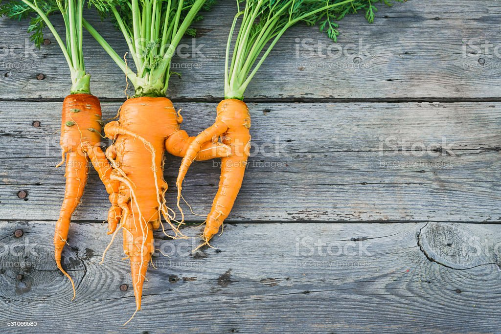 Trendy ugly organic  carrot stock photo