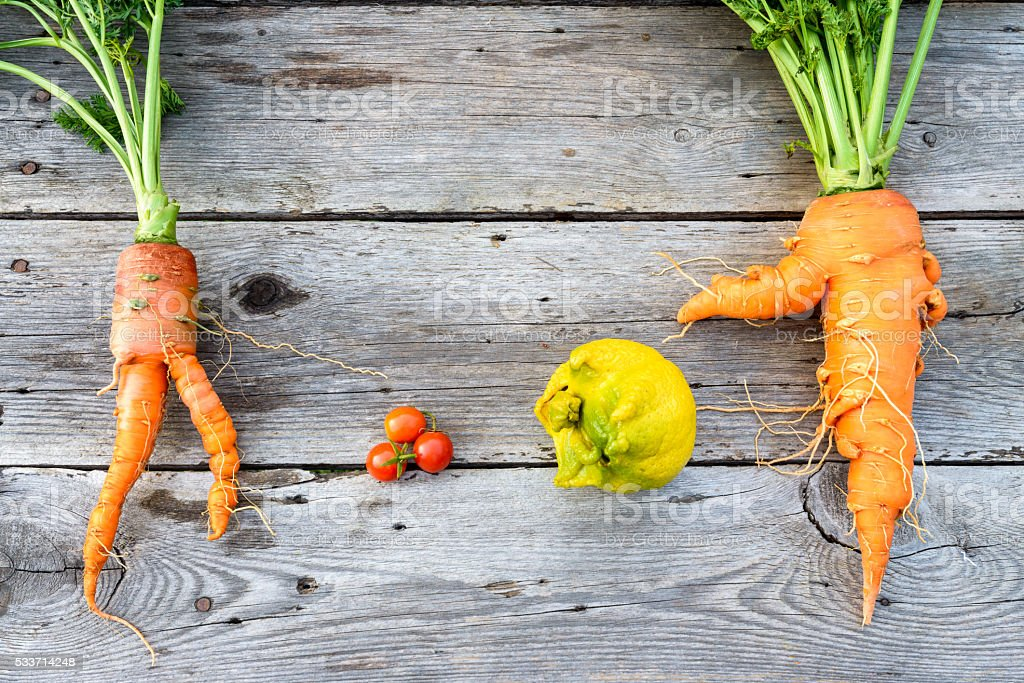 Trendy vegetables on barn wood stock photo