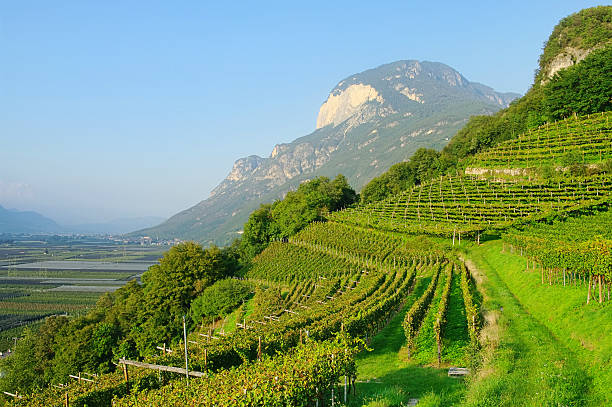Trentino Trentino landscape in Italy trentino alto adige stock pictures, royalty-free photos & images