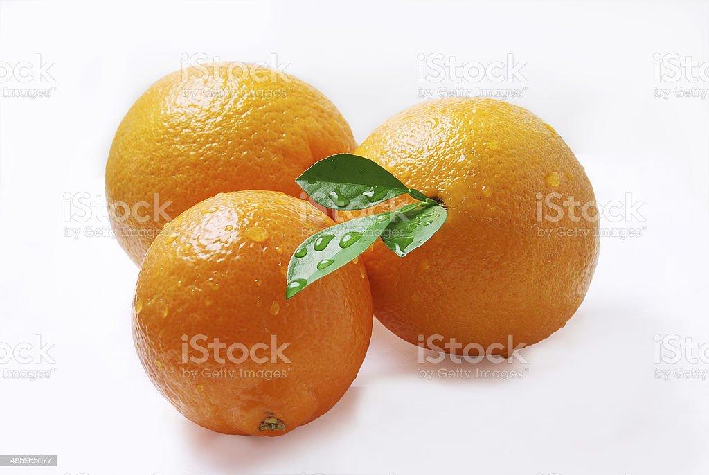 Tres deliciosas naranjas en fondo blanco stock photo