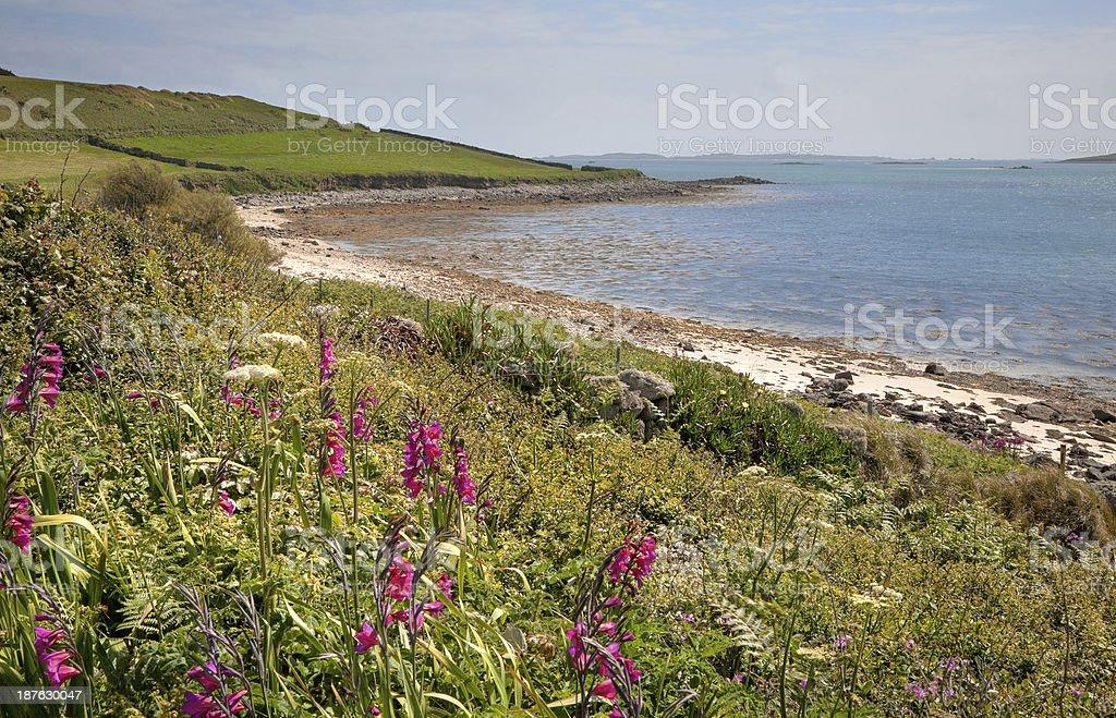 Tresco, Isles of Scilly royalty-free stock photo