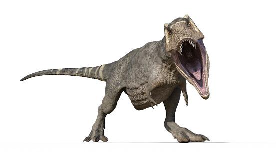 istock T-Rex Dinosaur, Tyrannosaurus Rex reptile, prehistoric Jurassic animal roaring on white background, front view, 3D rendering 1140153576
