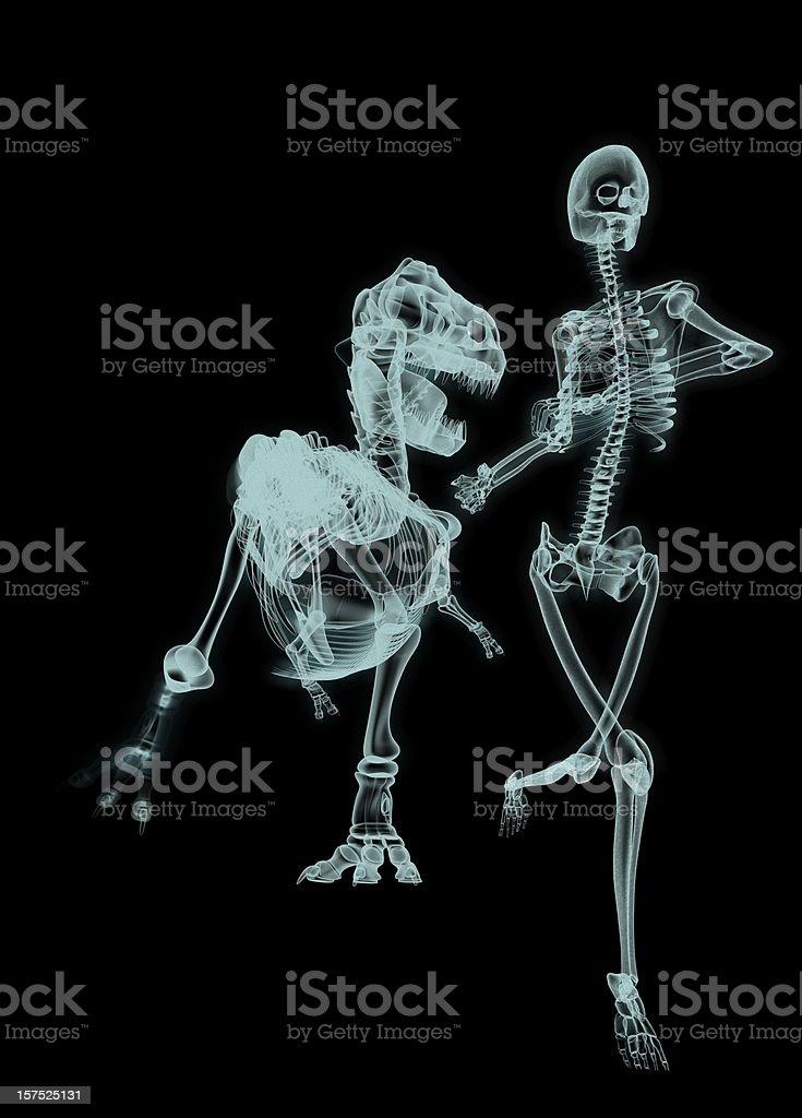 T-Rex hunt Human royalty-free stock photo