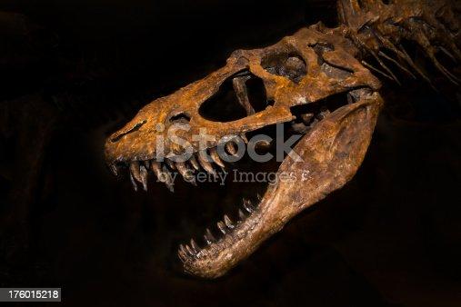 istock T-rex 176015218