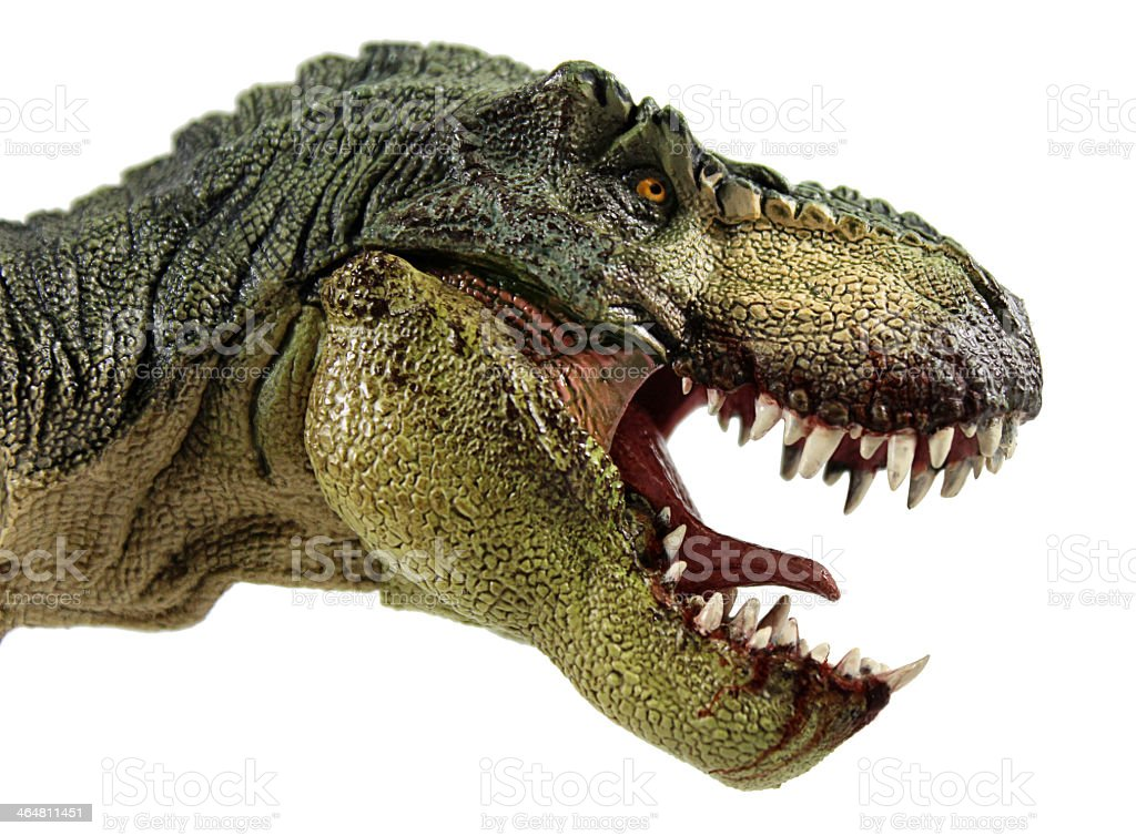 A T-Rex profile photo with jaw agape stock photo
