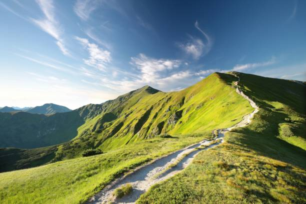 tatra 산에서 피크를 재판 - 카르파티아 산맥 뉴스 사진 이미지